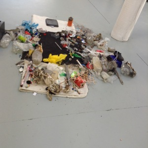 Gabbie Milne-Rodrigues, Pathological plastic OBJECTS, 2014. Static Performance. Materials retrieved by the artist from the Marine Parade foreshore, Napier, New Zealand.